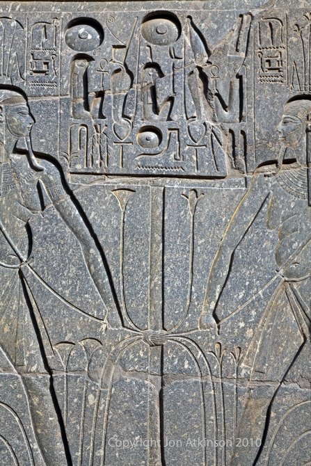 Relief in the Great court of Ramesses II