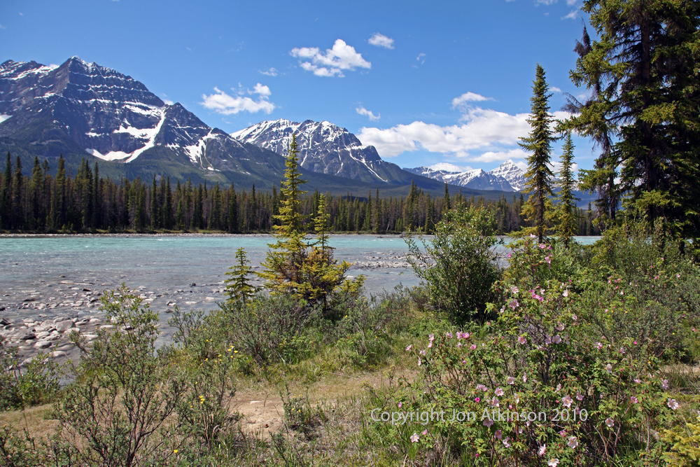 Mount Fryatt, Jasper National Park.
